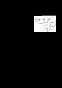 thesis ugent firw Gallery — university of ghent (universiteit gent) university of ghent, approximating the firw house style deze werd opgevat als een thesis.